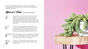Amazon Succulents The Little Book Of Cacti And Other Succulents Emma Sibley Adam