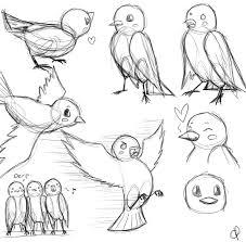 bird sketches by oranges and pears on deviantart