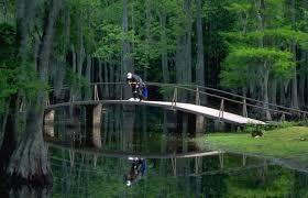 Parks nature louisiana louisiana travel