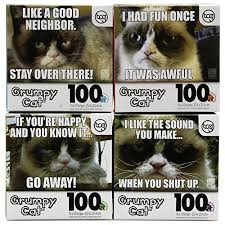 Grumpy Cat Meme I Had Fun Once - set of 4 official grumpy cat 100pc jigsaw puzzles funny meme kids