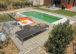 natural swimming pools cleaning the pool with plants