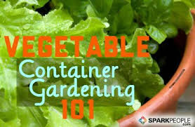 a beginner u0027s guide to container vegetable gardening sparkpeople
