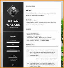 fancy resume templates extremely fancy resume templates free adorable professional template