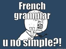 Funny Grammar Memes - french grammar quickmeme