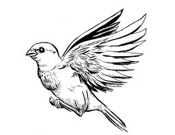 awesome grey ink sparrow tattoo design