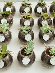 plant wedding favors 20 diy wedding favors for any budget