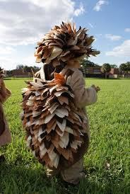 Hedgehog Halloween Costume 8 Hedgehog Halloween Costumes Images Costumes