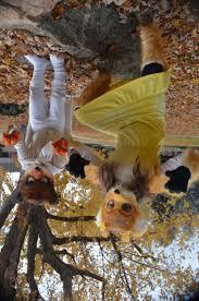 Fantastic Fox Halloween Costume Halloween Hoos