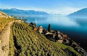 active travels visiting lake geneva u0027s lavaux wine region