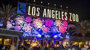 National Zoo Lights by L A Zoo Lights Los Angeles Tickets N A At Los Angeles Zoo 2017