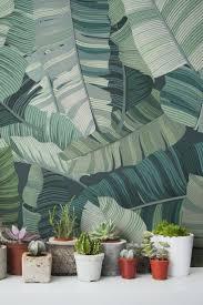 Hallway Wallpaper Ideas by 101 Best Wallpaper Images On Pinterest Wallpaper Leaves