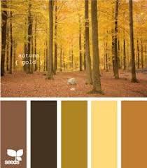 Autumn Color Schemes Fall For Autumn Color Palettes Ty Pennington Colors