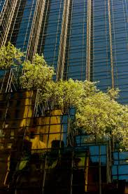 Trump House Inside Best 20 Trump Tower Nyc Ideas On Pinterest Trump Tower Art