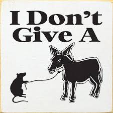 i don t give a i don t give a rat s ass picture of rat and donkey