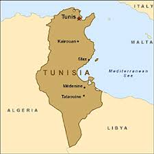 tunisia physical map health information for travelers to tunisia traveler view