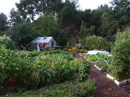 Vegetable Garden Restaurant by Love Apple Farms Workshop Summer Vegetable Gardening