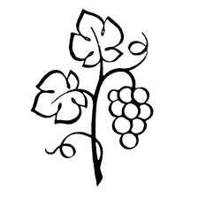 grape leaves coloring page grapes and all sorts of fruits flora