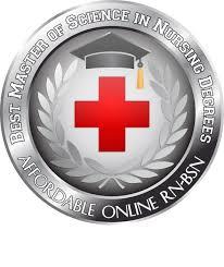 rn to bsn online program