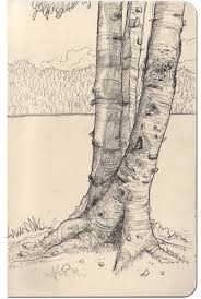tree pencil drawing google search u2026 pinteres u2026