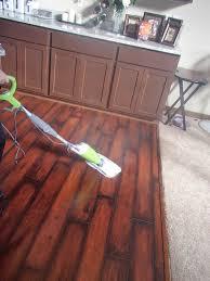 Laminate Flooring Steam Mop Brier Review Smart Living Steam Mop Plus Review