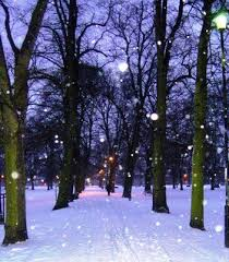 64 best serene snow falling softly images on snow