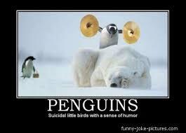 Meme Penguin - funny memes with clean humor funny penguin meme joke picture