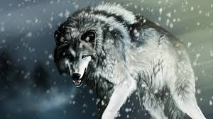 awesome animal wallpapers pk747 hd animal pictures mobile pc