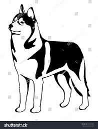 black white siberian husky graphic stock illustration 301634366