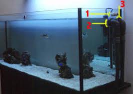 vasche acquario l acquario marino con pesci