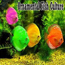 ornamental fish culture android apps on play