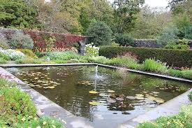 pond in the walled garden picture of dunvegan castle u0026 gardens