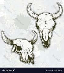 bull skull royalty free vector image vectorstock