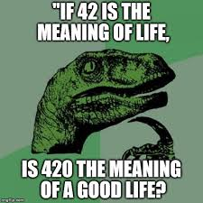 What Is The Meaning Of Meme - philosoraptor meme imgflip