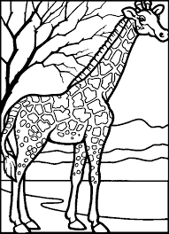 mammals coloring pages 76 best coloring pages images on pinterest coloring books