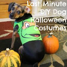 target halloween dog costumes last minute diy dog halloween costumes from baby onesies