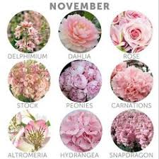 november flowers wedding budget tip 16 choose in season flowers november