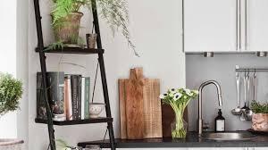 plante de cuisine plante intérieur dans la cuisine inspiration déco en photos côté