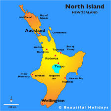 island on map the island map island beautiful zealand holidays