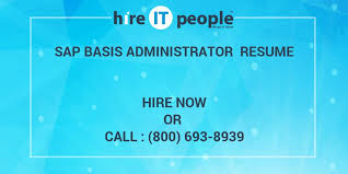 Sap Basis Sample Resume by Sap Basis Administrator Resume Hire It People We Get It Done