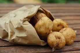 cuisiner la pomme cuisiner les pommes de terre que faire quelles recettes