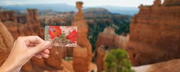 price of senior national park passes increases eightfold bryce