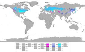 World Map Of Tornadoes by