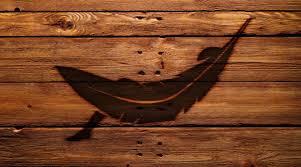 choosing the best hammock you u0027ve been doing it wrong