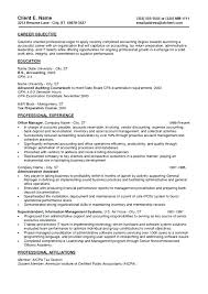 resume summary of qualifications examples example resumes credit