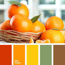 Color Suggestions For Website Best 25 Green And Orange Ideas On Pinterest Orange Color