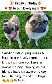 Happy Birthday Pug Meme - happy birthday to our lovely mum sending lots of pug kisses hugs