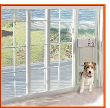 Patio Door With Pet Door Built In Exterior Door With Built In Pet Lowes Patio Panel Guys Singular
