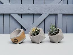 set of 3 concrete planters succulent planter succulent