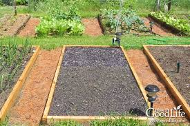 Best Type Of Mulch For Vegetable Garden - 5 ways organic mulch helps your vegetable garden