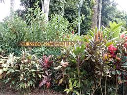 Cairns Botanical Garden by Butterfly Sanctuary In Kuranda Tarang